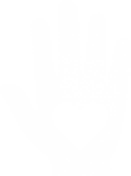 Könüllü